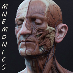 Best Medical Mnemonics Apps Free Download New Latest 2017