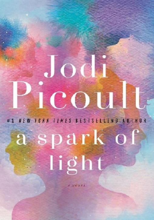 Download A Spark of Light By Jodi Picoult PDF Free