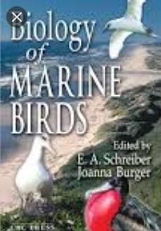 Download Biology of Marine Birds 1st Edition PDF Free