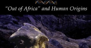 """Download Bones, Stones and Molecules: """"Out of Africa"""" and Human Origins 1st Edition PDF Free"""