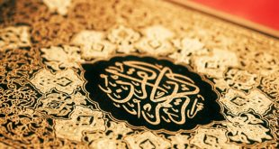 Download Holy Quran with Urdu Translation and Tafseer PDF Free