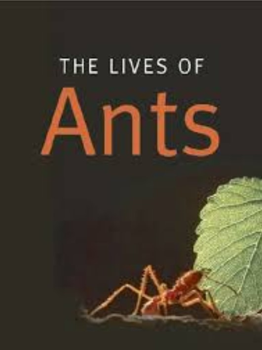 Download The Lives of Ants PDF Free