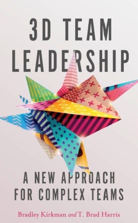 Download 3D Team Leadership: A New Approach for Complex Teams 1st Edition PDF Free