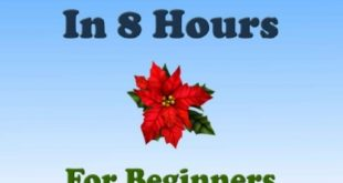 Download JAVA: In 8 Hours, For Beginners, Learn Coding Fast! Java Programming Language Crash Course, Java Quick Start Guide, A Tutorial Book with Hands-On Projects In Easy Steps! An Ultimate Beginner's Guide! PDF Free
