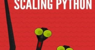 Download The Hacker's Guide to Scaling Python PDF Free