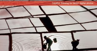 Download The Photographer's Mind: Creative Thinking for Better Digital Photos PDF Free