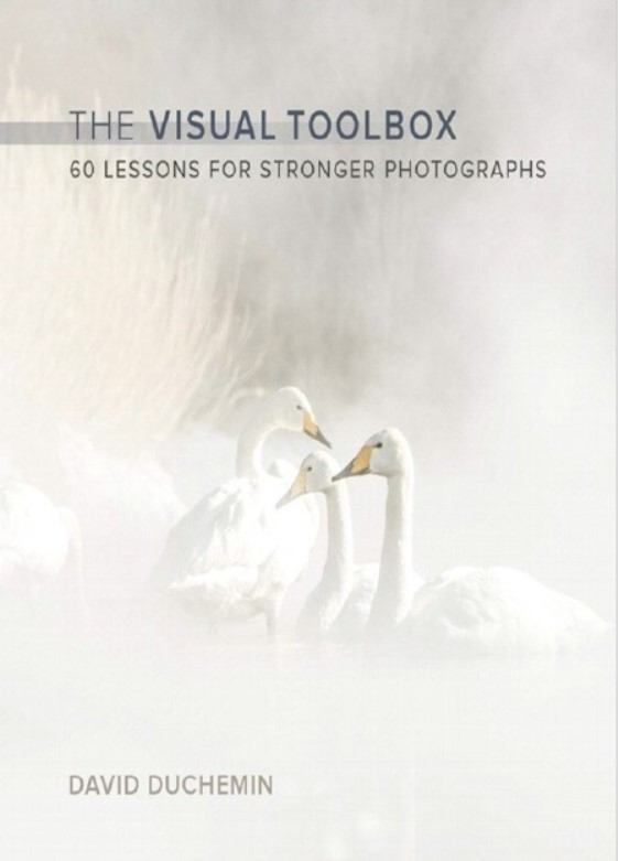 Download The Visual Toolbox: 60 Lessons for Stronger Photographs (Voices That Matter) 1st Edition PDF Free