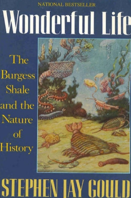 Download Wonderful Life The Burgess Shale and the Nature of History BYGould PDF Free